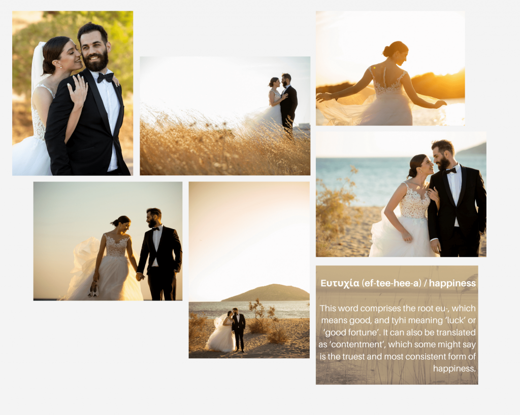 destination Wedding Greece happy